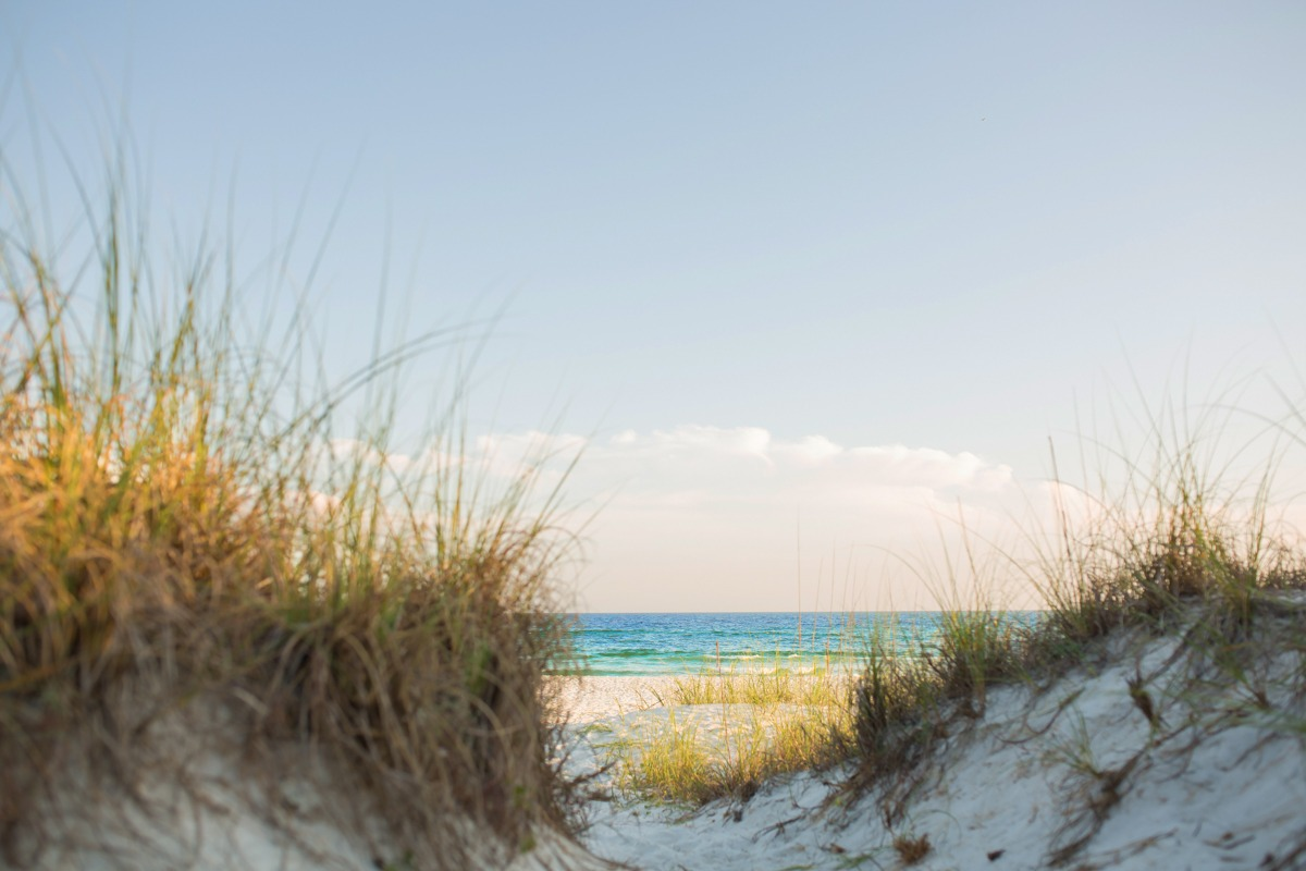Things to Do in Panama City Beach